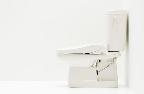 簡易 水洗 トイレ